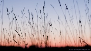 Gettysburg, dusk