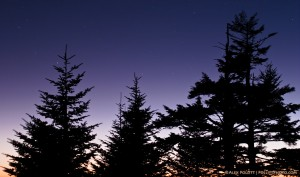 Dusk from Clingman's Dome
