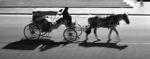 Hansome cab